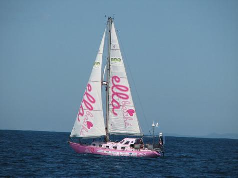 Ella's Pink Lady